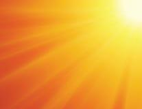 Sun sur le fond jaune Photo libre de droits