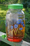 Sun Tea Royalty Free Stock Photos