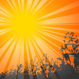 Sun theme. Shining sun with flowers on the background. Vector illustration Royalty Free Stock Photography