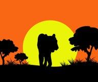 Sun & Tiger - Vector Royalty Free Stock Photos