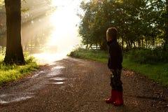 Sun a través de árboles con el muchacho en el camino Fotografía de archivo