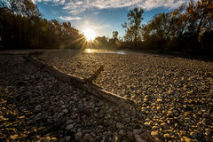 Sun-treams unten auf Boise River-Ufer mit Klotz Lizenzfreie Stockfotos