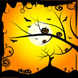 Sun Tree Means Trick Or Treat And Branch Royalty Free Stock Photos