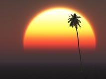 Sun tropical chaud illustration libre de droits