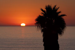 Sun on Tropical Horizon Royalty Free Stock Images