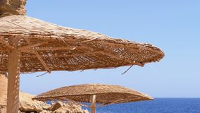 Sun umbrella on a coral beach in Egypt on the Red Sea. Wicker Exotic Parasol on the Beach of a Luxury Resort. The sunny coastline on Reef Coast of Sharm el stock footage