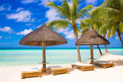 Sun umbrellas and beach beds under the palm trees on tropical be. Ach. Summer vacantion concept Stock Images