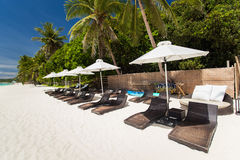 Sun umbrellas and beach chairs on tropical coast Royalty Free Stock Photos