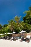 Sun umbrellas and beach chairs on tropical coast Stock Photography