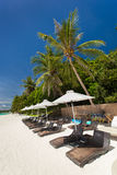 Sun umbrellas and beach chairs on tropical coast Royalty Free Stock Photos