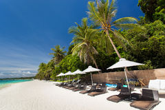 Sun umbrellas and beach chairs on tropical coast Stock Image