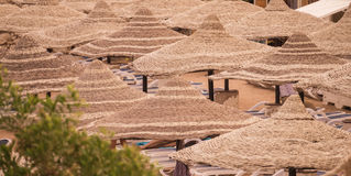 Sun umbrellas on the tropical beach. Stay at the luxurious tropical hotel on the beach. Sun loungers, parasols, palm trees and a beautiful Park. Egypt, red Sea Royalty Free Stock Photography