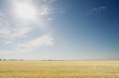 Sun und Himmel Lizenzfreies Stockfoto