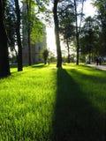 Sun und Schatten Lizenzfreie Stockfotos