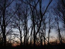 Sun unten Dendermonde lizenzfreies stockbild