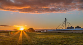 Sun Up Chicken Farm. Chicken farm silos and sheds at sunrise Stock Photo