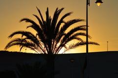 The Sun uppsättningar i Spanien Arkivfoton