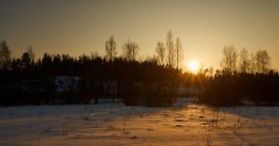 Sun va abajo detrás de árboles Imágenes de archivo libres de regalías