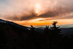 Sun vers le bas Photo libre de droits