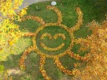 Sun von Blättern lizenzfreie stockfotografie