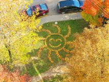 Sun von Blättern lizenzfreie stockbilder
