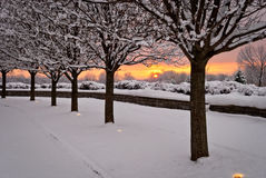 Sun Watchers enjoying the Sunset. Line of trees covered with snow with sunset background. Trees with snow on branches and snow on ground. Sunset background in royalty free stock images
