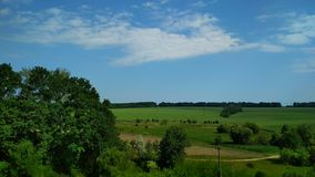 Sun weather and green landscape. Trees, field, blue, sky, clouds, calm, summer, view, betweensities stock photos