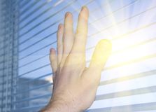 The sun in a window. Stock Images