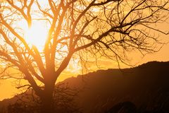 Sun wusch sich stockfotografie