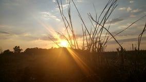 Sun y cielo Imagen de archivo libre de regalías