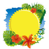 Sun y flores Imagenes de archivo