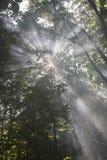 Sun y humo Imagen de archivo
