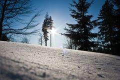 Sun y nueva nieve Fotografía de archivo