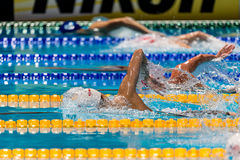 Sun Yang ( China) Stock Photo