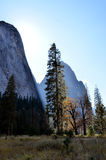 Sun in Yosemite Valley Stock Image