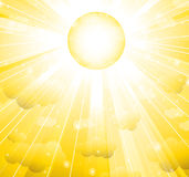 The sun Royalty Free Stock Image