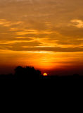 Sun zu glänzen Lizenzfreie Stockfotografie