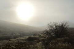 Sunball flou, parc national de grande courbure, le Texas Photos stock
