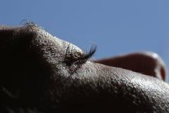 Sunbath和皮肤 库存照片