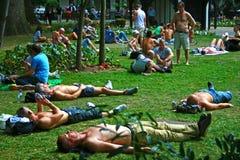 Sunbathers i London parkerar Royaltyfri Foto