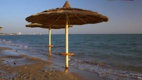 Sunbathing area on the beach stock video