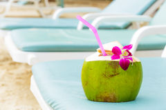 Sunbathing with coconut drink Royalty Free Stock Photos