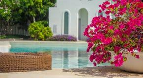 Sunbathing lounger swimming pool side. Royalty Free Stock Image