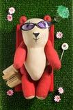 Sunbathing toy bear Royalty Free Stock Photos