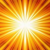 sunbeam Arkivbilder