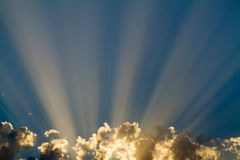 Sunbeam Stock Photography