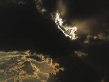 sunbeam Fotos de Stock