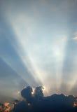 Sunbeam Imagens de Stock