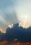 Sunbeam Fotos de Stock Royalty Free