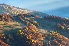 Sunbeam and autumn misty mountain. Stock Photography